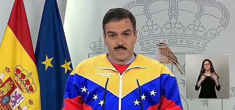 Aló presidente Sánchez