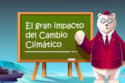 Cómo impacta el cambio climático en el mundo y cómo podemos evitarlo