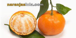 Nueva cosecha de mandarinas de Naranjas Lola