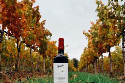 Nace La Zorrera 2015, el primer vino de parcela de Chivite: garnacha en estado puro