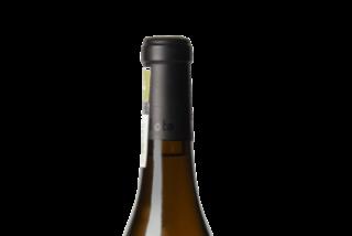 El porqué los vinos blancos están a la última se puede descubrir en el Villota Blanco Selección 2017