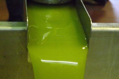 El aceite de oliva de cosecha temprana, el aceite más premium al que llaman Primicia
