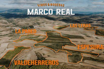 Bodegas Marco Real, en busca de tesoros vinícolas