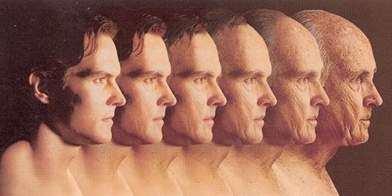 gen, eterna, juventud, prolongar, vida, celulas