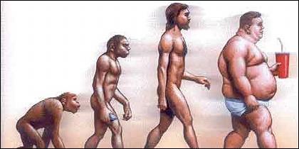 Del mono al hombre obeso.