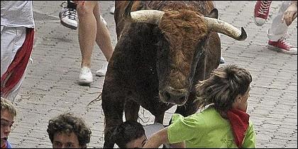 Encierros, fiestas, toros.