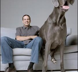 Dave Nasser, con su dogo alemán George, el perro más grande del mundo.