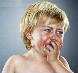 Abusos a menores en Holanda
