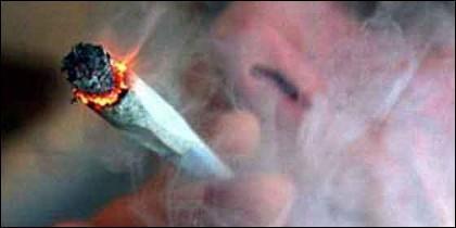 Hachis, marihuana y droga.