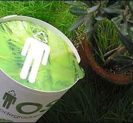Urna Bios: conviértete en un árbol después de morir.