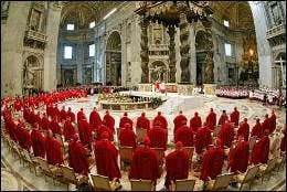 Cardenales en San Pedro