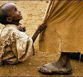 Hambre, sed, sequía y muerte en Africa.