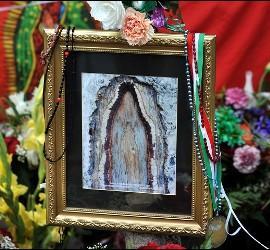 Cuadros con la Virgen del árbol