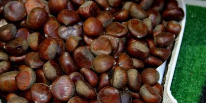 La castaña es una generesa mina de glucidos lentos, vitamina (B), magnesio y potasio.