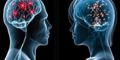 El cerebro es todo un enigma