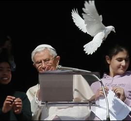 Benedicto XVI soltando la paloma blanca