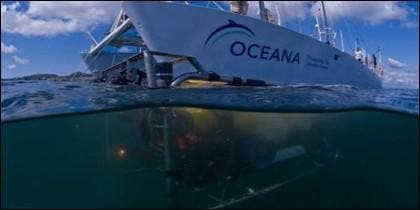 Oceana Rangers