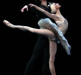 Lacarra y Dino en 'El cisne blanco'