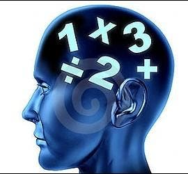Educación, cerebro, cálculo y matemáticas.