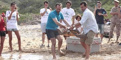 Bauzá y Company soltando tortugas