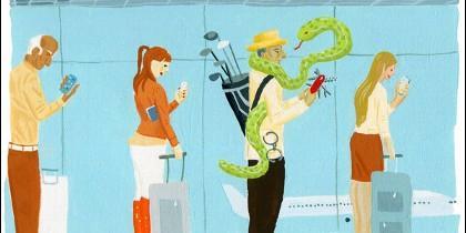 Viajero, turista, cliente.