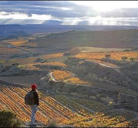 Camino de Santiago. La Rioja. Fuente EscapadaRural.com