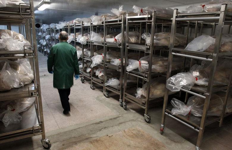 La Facultad de Medicina de la Complutense alquila cadáveres a 750 ...