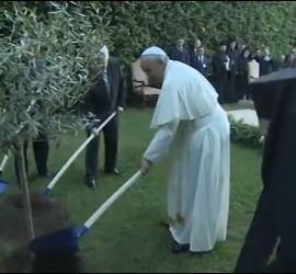 Bartolomé, Francisco, Peres y Abbas plantaron un árbol por la paz