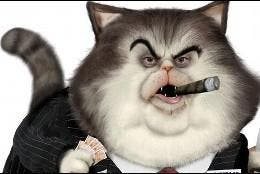 Banquero, millonario, gato.