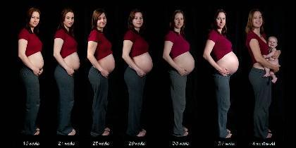 maternidad, embarazo y natalidad.