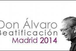 Beatificación Don Alvaro