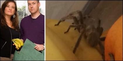 El matrimonio y la araña