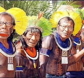 Indígenas brasileños