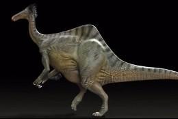 'Deinocheirus mirificus'