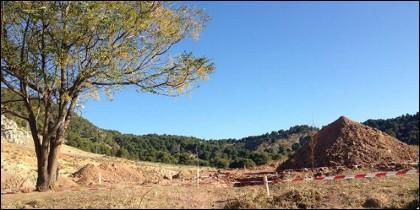 Zona de Alfacar en la que puede estar enterrado Lorca.