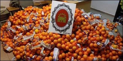 Naranjas incautadas.