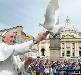 Papa + paz