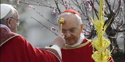 Papa y Piacenza