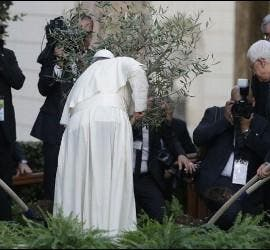 El Papa plantó un olivo por la paz junto a Peres y Abbas