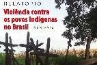 Informe sobre los indígenas de Brasil