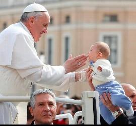 Papa de la ternura