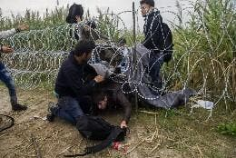 Inmigrantes cruzando ilegalmente la frontera desde Serbia.