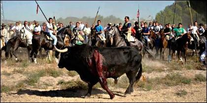 El Toro de la Vega de Tordesillas.
