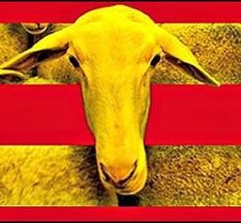 Cataluña, lengua, educación y medios de comunicación.