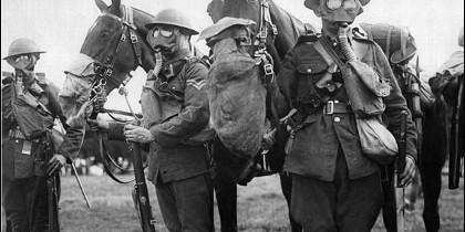 Soldados y caballos con máscaras antigás en la I Guerra Mundial.