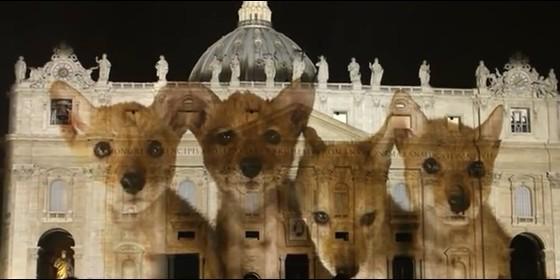 Resultado de imagen para juego de luces en la basilica de san pedro