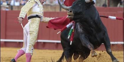 Torero y toro.