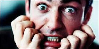 Miedo, fobia, terror, pánico, susto, manía y rabia.