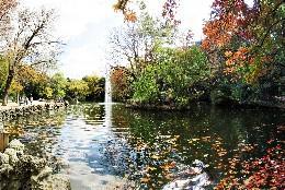 Imagen del lago en el Campo Grande de Valladolid
