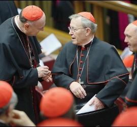 El cardenal Kasper, en el Sínodo
